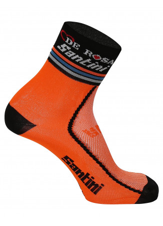 TEAM DE ROSA-SANTINI 2016 Socks