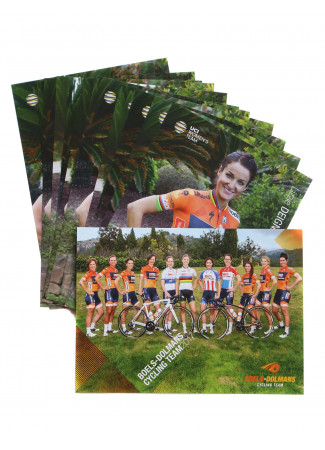 BOELS-DOLMANS - Team Cards